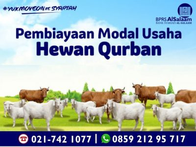 Pembiayaan Syariah Modal Kerja untuk Usaha Hewan Qurban 2019